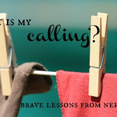 What is My Calling?  Brave Lessons from Nehemiah