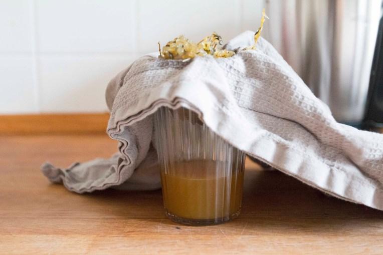 Rezept für selbstgemachten Hustensaft. Dieser Thymianhustensaft ist ein super Kinderhustensaft und ganz einfach selber zu machen | Ichsowirso