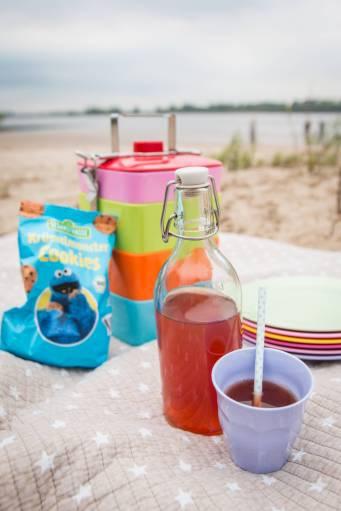 Picknick am Falkensteiner Ufer