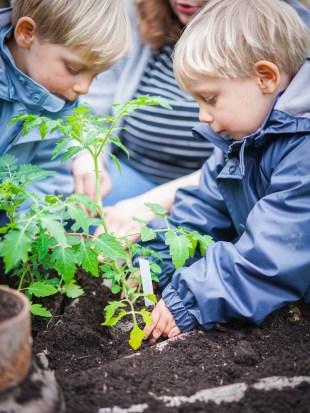 Im Mai ist Pflanzzeit und wir haben gemeinsam mit den Jungs ihr eigenes Beet bepflanzt. Woher kommt Gemüse und wie wächst es? Gerade für Stadtkinder finde ich es besonders wichtig, dass sie lernen, dass Obst an Bäumen wächst und nicht im Supermarkt. Ein paar Gedanken von mir und Gartenacessoires aus dem Tausendkind Shop