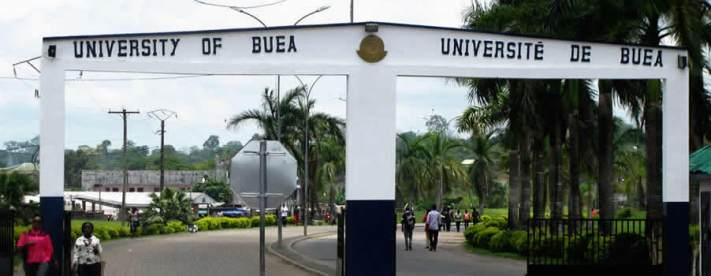 Image result for Université de Buéa