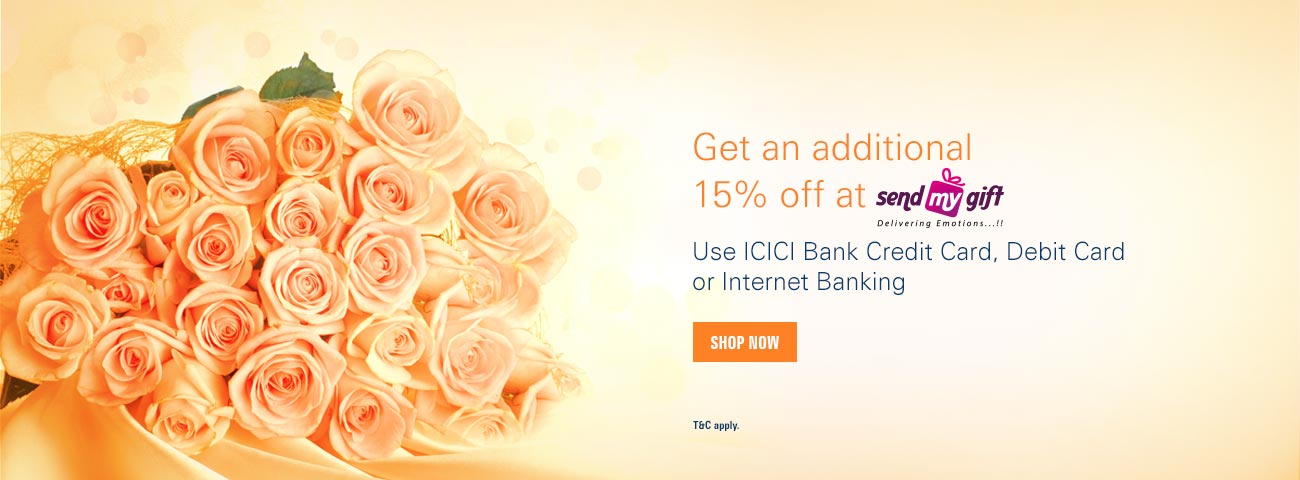 Icici Bank Personal Loan Online Payment