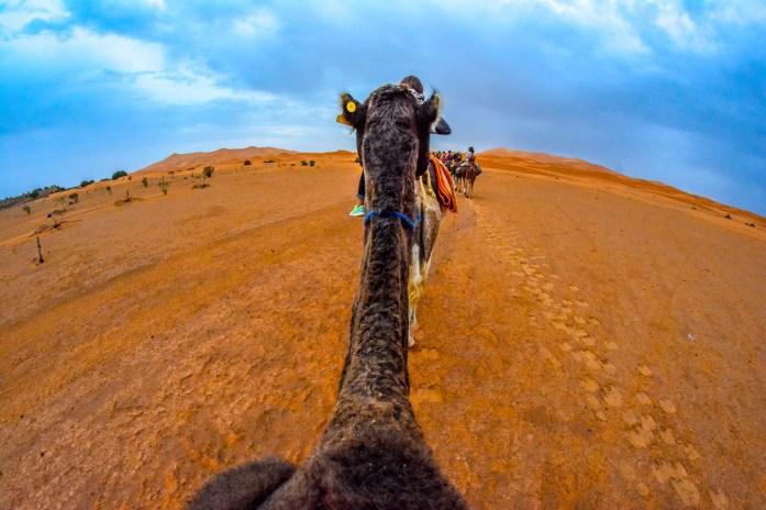 Sahara Maroc Mergouza Dune