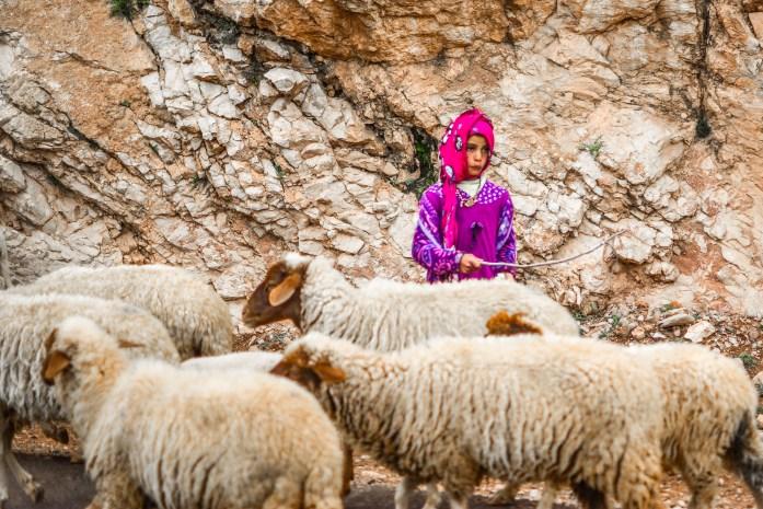 Vallée des Roses, de la Vallée de Todra, et de Vallée de Dadés Maroc berbère