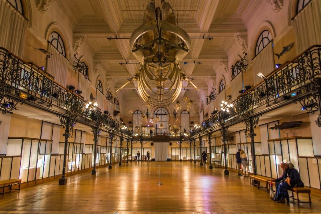 Musée Océanographique de Monaco Provence Monegasque blogvoyage blog voyage icietlabas