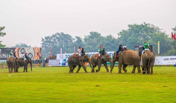 triangle d'or Polo à dos d'éléphant ressort Thaïlande Chiang Rai blogvoyage blog voyage icietlabas