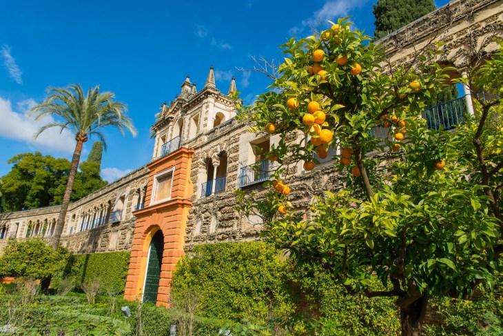 Seville Real Alcaraz ville de cinemas blog voyage icietlabas