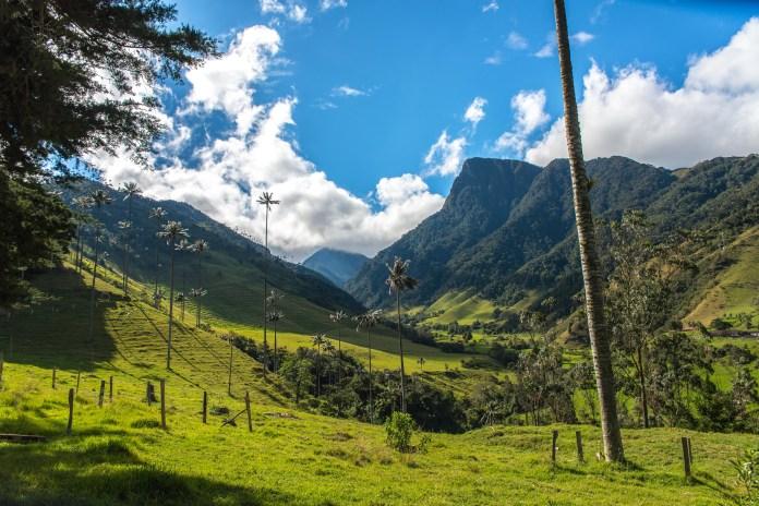 Vallée de la Cocora Salento Colombie Blog Voyage-10