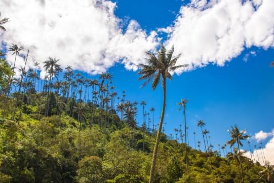 Trois semaines en Colombie blog de voyage idées voyage de noces