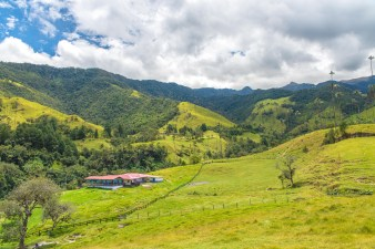 Vallée de la Cocora Salento Colombie Blog Voyage-41