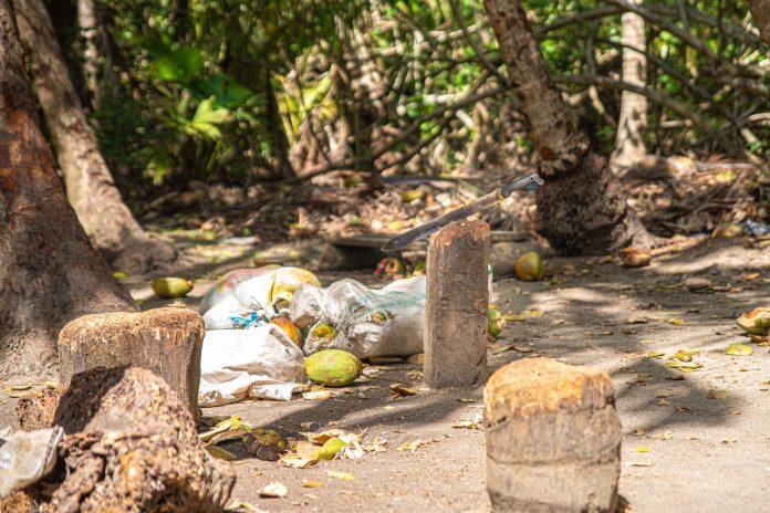 Tayrona National Parc Trois semaine en Colombie Blog Voyage-16