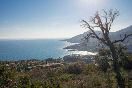 Notre Dame d'Afrique paca théoule sur mer blog voyage