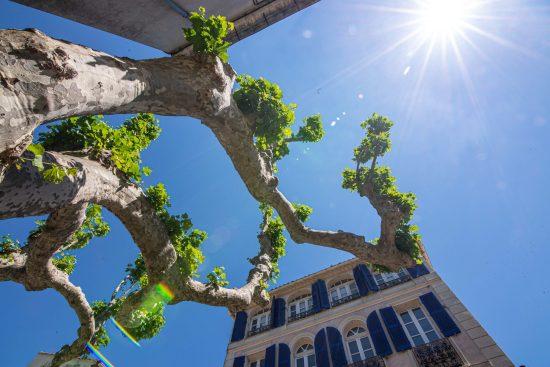 Collobrières département du Var Provence Alpes Côte d'Azur Paca blog voyage-13