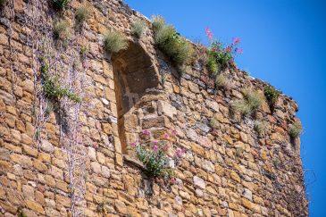 Collobrières département du Var Provence Alpes Côte d'Azur Paca blog voyage-27