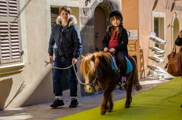 Bormes-Les-Mimosas Que faire dans le Var que faire en Provence Alpes Cote d'Azur Paca Blog Voyage France