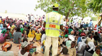Mubi Attack Displaced Over 10,000 Persons – NEMA