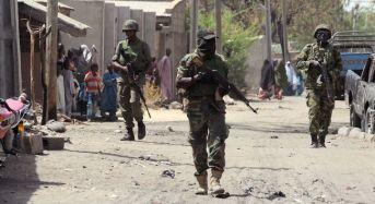 Troops Repel Boko Haram Attack In Madagali
