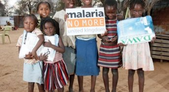 Innovating To End Malaria: A Fellowship For Journalists