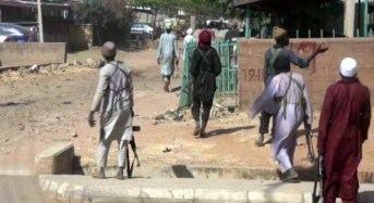 'No soldier to help' as Boko Haram 'kills, kidnaps many' in Adamawa
