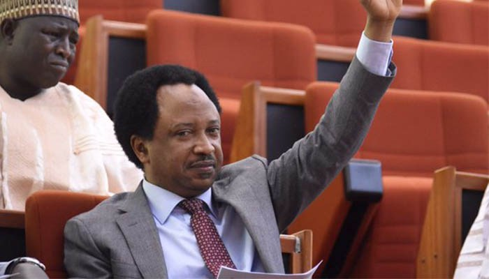 Shehu Sani: Nobody should deceive anybody, there'll be no restructuring before 2019 elections