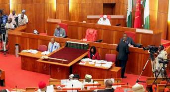 Senator blames FG for abduction of Yobe schoolgirls