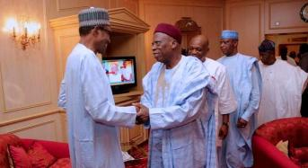 APC senators 'sabotaging the govt and stabbing one another in the back', says Adamu
