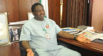 Buhari said a lot of — not all — Nigerian youth are lazy, Adesina clarifies