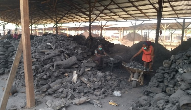 charcoal production in enugu state