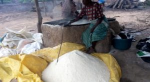 Women making garri. PHOTO CREDIT: PREMIUM TIMES