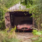 Barnfinds: Jaguar E-Type