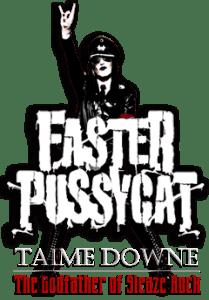fasterpussycat-main