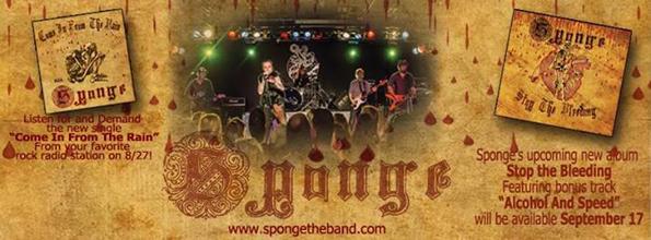 sponge-2013-1