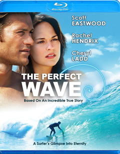 'The Perfect Wave'