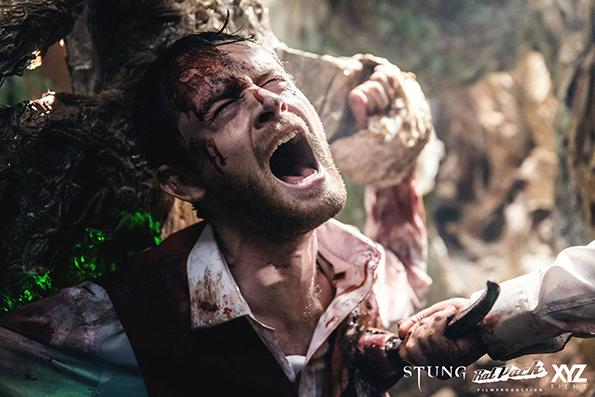 stung-2015-2