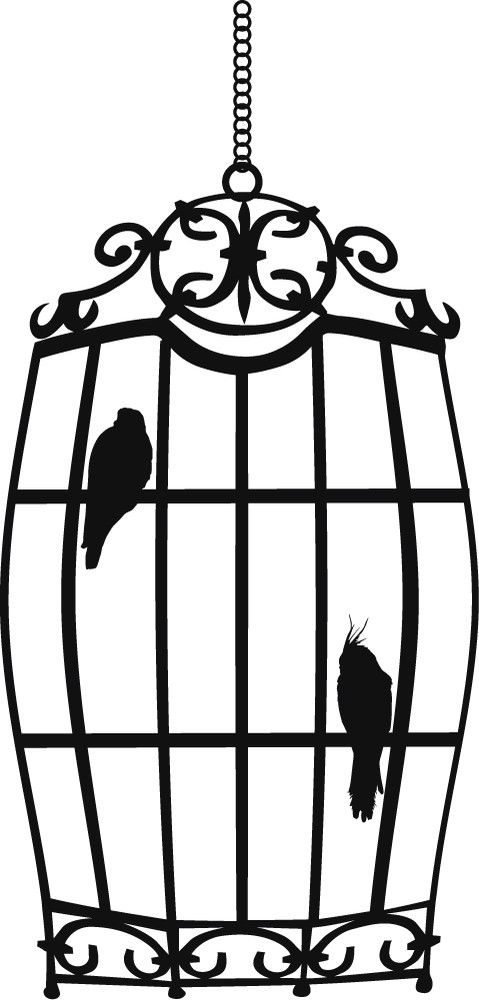 Bird Cage Wall Sticker Birds Feathers Wall Decal Living