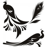 Peacocks Feather Birds Animals Wall Decals Wall Art Stickers