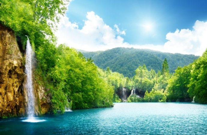 Pleasures in the Islamic Paradise: Spiritual or Sensual?