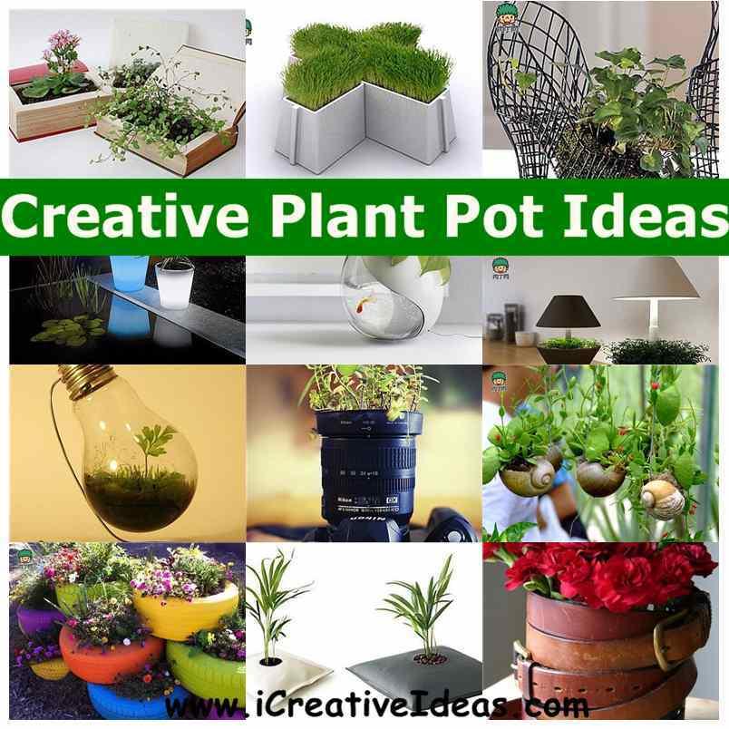 Creative Plant Pot Ideas1
