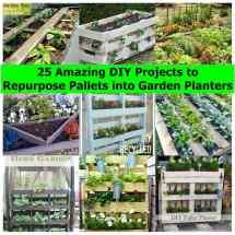 Amazing Diy Projects Repurpose Pallets Garden