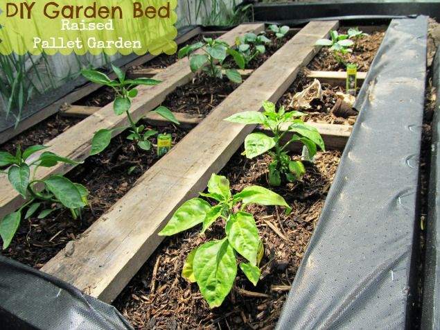 Amazing Diy Projects To Repurpose Pallets Into Garden Planters