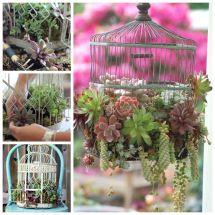 Diy Repurpose Dresser Succulent Planter