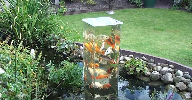 Creative Ideas DIY Koi Observation Tower In Garden Pond