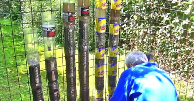 Creative Ideas How To Turn Soda Bottles Into Sustainable Tower