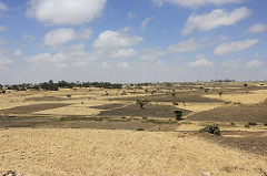 The harsh drylands of Ethiopia
