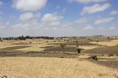 The harsh drylands of Ethiopia