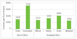 Economic and residual gains after micronutrient application.