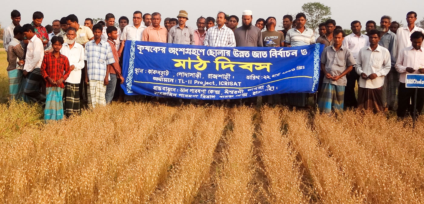 A Field Day organized at an ICCV 92944 field in Bangladesh. Photo: PRC, Ishurdi, Bangladesh