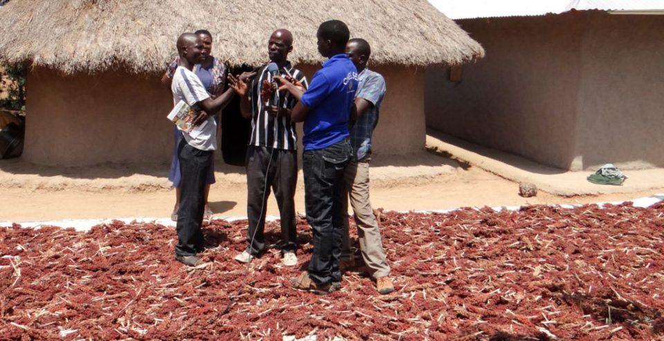 Farmer Martin Lumala (center) explaining a point to the press. Photo: Daniel Ajaku, ICRISAT