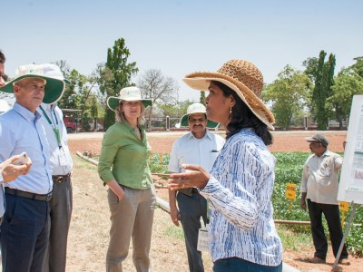 Mr Grainger-Jones (extreme left) and Ms Bennett (fourth from right), interact with scientists at a groundnut fileld. Photo: PS Rao, ICRISAT
