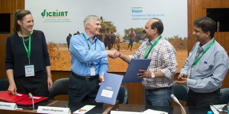 Signing of an MOU between ICRISAT and IIMR to jointly coordinate Smart Food initiatives in India. From left: Joanna Kane-Potaka, Director, Strategic Marketing and Communications, ICRISAT; Dr David Bergvinson, Director General, ICRISAT; Dr Vilas Tonapi, Director, IIMR; and Dr Dayakar Rao, Principal Scientist, IIMR. Photo: S Punna, ICRISAT